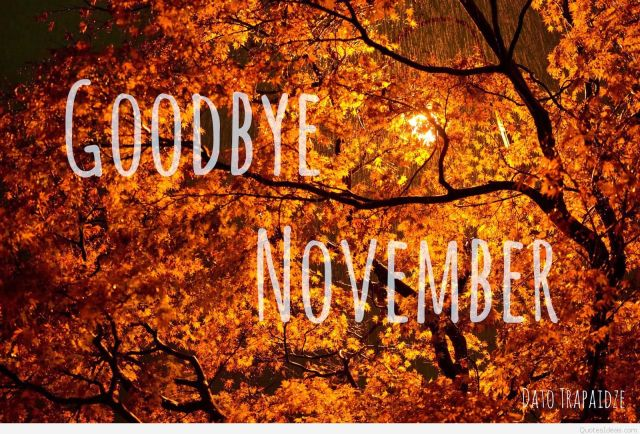 Awesome-Photo-Goodbye-November